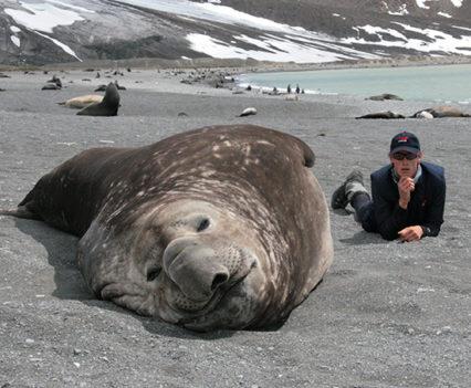 Elephant Seal and George Bullard on South Georgia