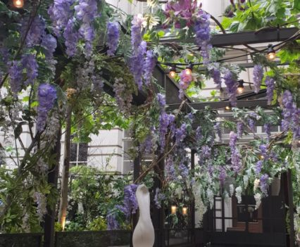 Wisteria in The Terrace, Rosewood London