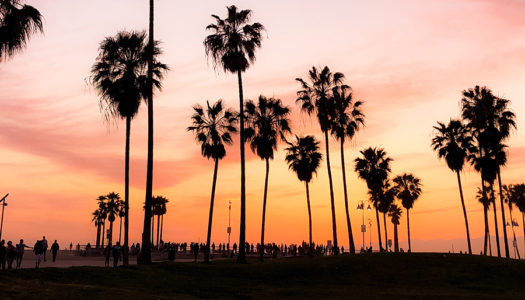 California: dream destination