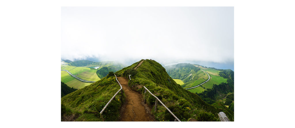 Azores: luscious greenery