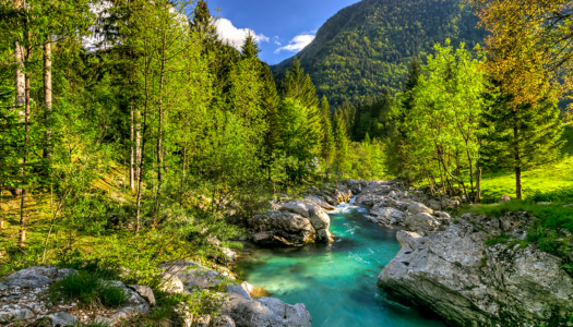 The power of nature on health & wellbeing in Slovenia
